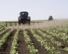 Что аграрий должен знать о БОРЕ?