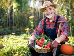 Украинцы получат право на фермерство без образования и опыта работы?