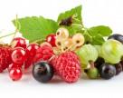Как продать ягоду на 40% дороже
