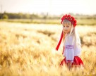 Агрохолдинг «Росток-Холдинг» удвоил валовый сбор ранних зерновых