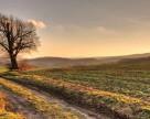 Осеннее решение весенних проблем