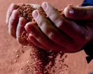 Снижение мирового спроса на хлоркалий
