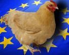 Як ЄС бореться з яйцями ураженими пестицидами