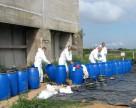 Более 300 тонн непригодных пестицидов находится в Киевской области
