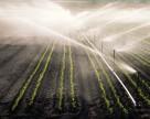 Чем грозит упадок систем орошения украинским урожаям