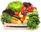 Сохранить и приумножить урожаи в плодоовощеводстве