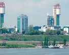 ОПЗ в 10 разів збільшив відвантаження аміаку на ринок України