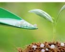 Украинские аграрии сократили объемы использования удобрений втрое