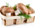 Мировой рынок грибов достигнет $50 млрд к 2019 году