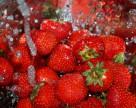 Град в Украине не нанесет масштабного ущерба урожаю, но огородные культуры пострадают