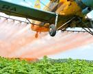 Население Швейцарии подписало петицию против использования пестицидов