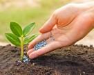 Минсельхоз России: аграрии нарастили закупки минудобрений