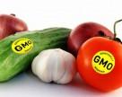 В Украине усилят контроль за ГМО