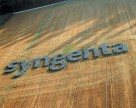 Syngenta запускает высокоэффективный протравитель семян в Канаде