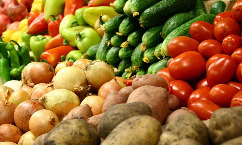 Овощи как роскошь: Сколько украинцам придется заплатить за запасы на зиму (ВИДЕО)