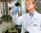 BASF и AgGateway внедряют проекты для поддержки аграриев