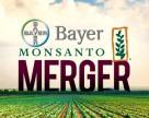 Bayer и Monsanto еще на шаг ближе к слиянию
