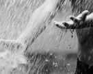 Влияние погодных условий июня на состояние сельскохозяйственных культур