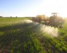 Температура воды определяет эффективность гербицидов
