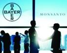Поглощение Monsanto компанией Bayer наталкивается на первые подводные камни