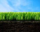 Новые технологии и анализ агрохимических рынков