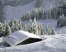 Гидрометцентр спрогнозировал теплую зиму