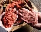 Беларуськалий начнет добычу на Петриковском месторождении в 2019 году