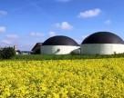 Производители биогаза и биотоплива вздохнут свободнее