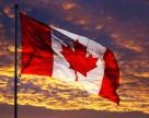 Канада может запретить использование инсектицидов в сельском хозяйстве