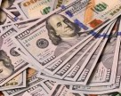 Bayer и Monsanto инвестируют в исследования и разработки $16 млрд