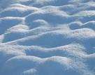 В Украину пришли морозы: что с озимыми?