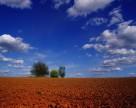 Новый законопроект об обороте сельхозземель