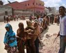 Конфликты оказывают воздействие на продовольственную безопасность