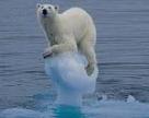 Глобальное потепление может полностью изменить экономику мира