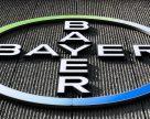 Bayer может продать пакет семян овощных