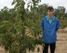 Мелитополь диктует черешневую моду в Украине