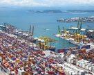 Мощность зерновых терминалов портов Большой Одессы может увеличиться на 50 млн. тонн в год