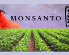Monsanto подписало соглашение об обмене данными с AGCO
