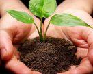 Мобильная установка по производству органоминеральных удобрений из биомассы создана в Беларуси