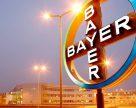Bayer намерен производить в России 6 млн литров пестицидов