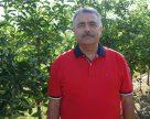 Эталон яблоневого сада в Украине