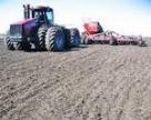 Українські аграрії планують засіяти озиминою 7,2 млн га