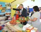 На Кіровоградщині розвивають зелений туризм