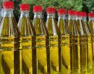 Украинские порты теряют объемы экспортного масла