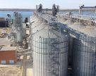 Темпы отгрузки зерна из морских портов Украины снизились