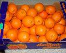 Україна повернула до Польщі уражені мандарини