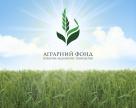 «Аграрний фонд» анонсував інтервенцію на ринок міндобрив для стабілізації цін