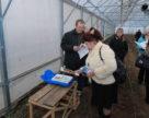 Органічне овочівництво для закритого ґрунту дешевше