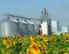 Элеваторные мощности Львовщины увеличатся на 68 тыс тонн