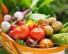 Українські органік-продукти матимуть свій логотип